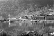 Brakkene i Saltviki