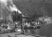 Fiskarflåte i Årdal