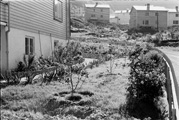 Edvard Romørens hage