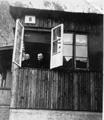 Brakke 8 - Saltviki